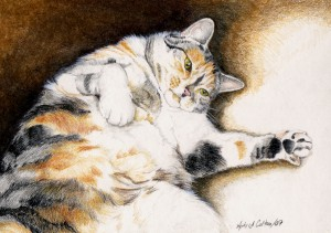 Colour pencil sketch 2 8x10 copy